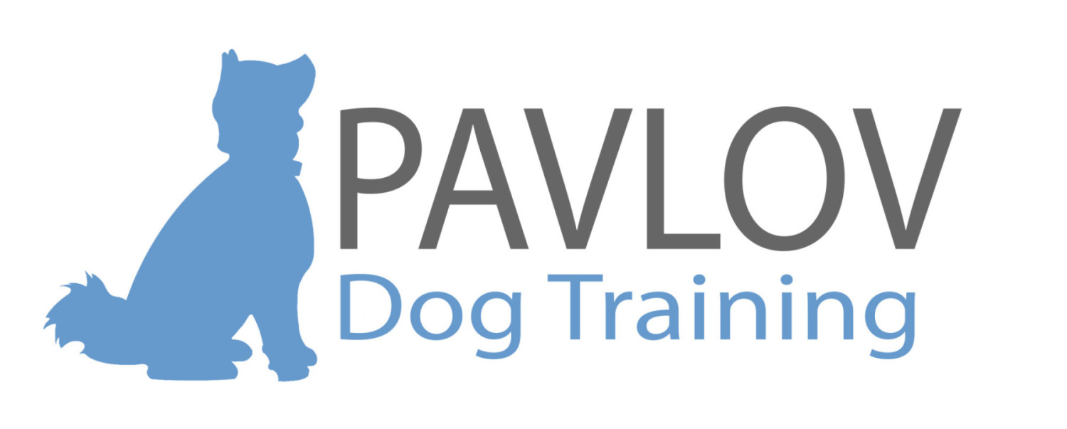 In-home Dog Training in Portland / Obedience, Puppy, Behavior Training