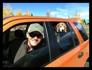 Beagle car border